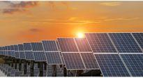 Đầu tư hơn nghìn tỷ đồng xây nhà máy điện mặt trời thứ hai tại Hậu Giang