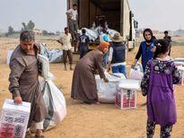 Liên Hợp quốc đối phó các cuộc tấn công hóa học ở Iraq