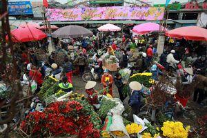 """Chợ hoa Quảng Bá """"nêm"""" chặt người những ngày cuối năm"""