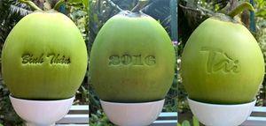 Bạt ngàn trái cây tạo hình độc lạ dịp Tết
