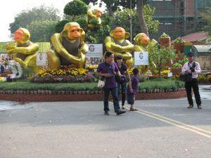Tiền Giang: Người dân háo hức với đường hoa Hùng Vương