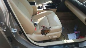 Toyota Camry suýt cháy vì bóng bay nổ bên trong xe