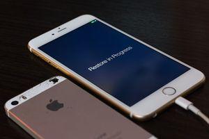 """Cập nhật iPhone 6 có thể thành cục gạch vì lỗi """"Error 53"""""""