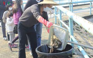 Hà Nội: Kinh hoàng cá chết bốc mùi ở đường ven Hồ Tây