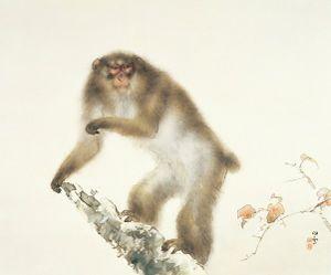 Ngắm khỉ trong tranh cổ cực đẹp của Nhật Bản