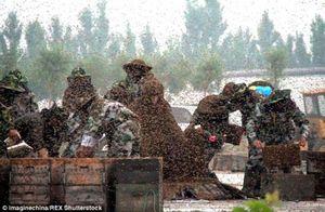 Kỉ lục thế giới gây sốc: Cho triệu ong bu kín người