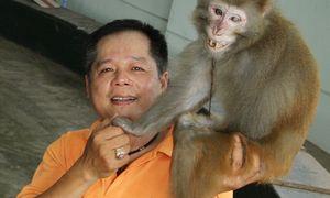Chuyện sau sân khấu của những chú khỉ làm xiếc