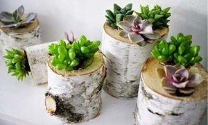 Tận dụng thân gỗ làm lọ hoa trang trí cực ấn tượng