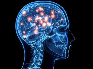 Liệu con người có bị hết bộ nhớ?
