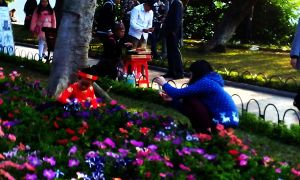 Khách Tây ngơ ngác nhìn vườn hoa Hồ Gươm xơ xác ngày Tết