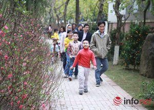 Ảnh: Hội hoa Xuân lớn nhất miền Bắc ở Hà Nội