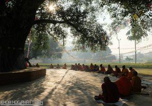 Ngôi chùa Việt ở đất phật Nepal