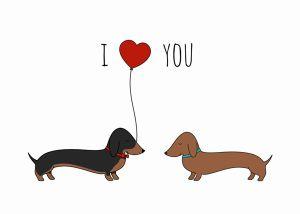 Bộ thiệp Valentine xinh lung linh cho hội mê thú cưng