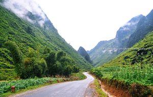Những cung đường đẹp ngất ngây ở Việt Nam