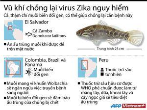 Điểm mặt những vũ khí chủ lực chống virus Zika
