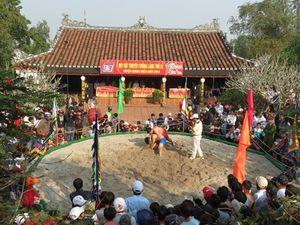 Sôi động hội vật truyền thống làng Thủ Lễ