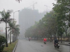 Dự báo thời tiết hôm nay 13/2: Sương mù rải rác, gió nhẹ