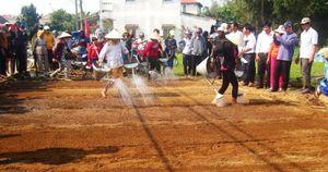 Làng rau 500 năm tuổi tưng bừng mở hội đầu Xuân