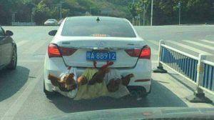 """Ô tô biển số """"con gà, con vịt"""": Chuyện không chỉ có ở Việt Nam"""