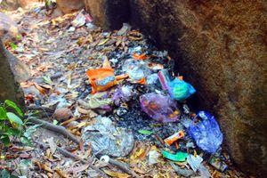 Du khách đến Ghềnh Ráng bị 'quấy nhiễu' bởi... rác thải