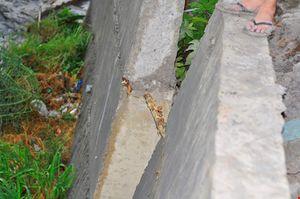 Mưa lớn, cầu Xóm Mai hỏng bờ kè, trơ lõi gỗ