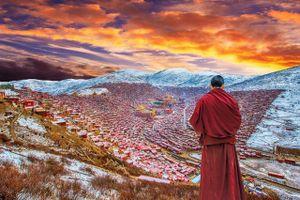 Ngắm Học viện Phật giáo lớn nhất thế giới ở Tây Tạng