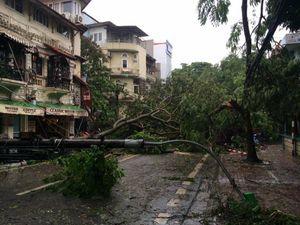 Cập nhật mới nhất những tuyến đường có cây đổ ở Hà Nội