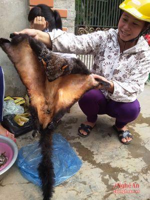 Đa dạng sản vật chợ Kim Sơn