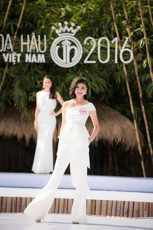 5 ứng viên sáng giá nhất cho ngôi vị HHVN 2016