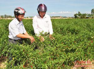 Nam Đàn cần hạn chế nợ đọng trong xây dựng nông thôn mới