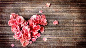 Đừng vội, để không ngộ nhận tình yêu