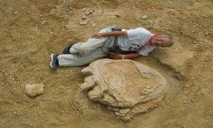 Dấu chân 70 triệu năm của thằn lằn hộ pháp trên sa mạc