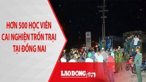 Đã bắt được hơn 300 học viên cai nghiện trốn trại gây náo loạn tại Đồng Nai