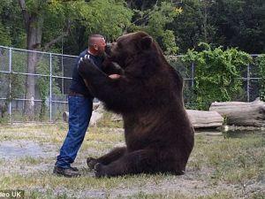Sửng sốt xem gấu khổng lồ âu yếm con người