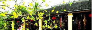 Chọn tuổi xông nhà, xông đất năm Bính Thân 2016