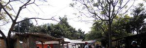 Chợ quê ngày cuối năm, mang rau trái vườn nhà đi bán