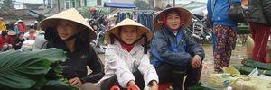 Lá dong - Hồn quê ngày Tết