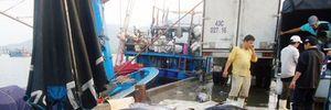 Đà Nẵng gấp rút tổ chức mỗi chợ 1 điểm bán cá sạch