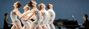 """Các ngôi sao ballet Pháp """"se duyên"""" cùng dàn nhạc Việt"""