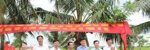 LĐLĐ huyện Vĩnh Bảo (Hải Phòng): Trao kinh phí hỗ trợ xây dựng nông thôn mới
