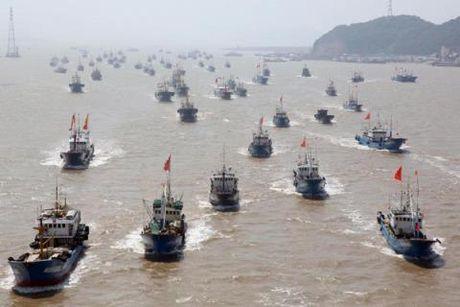 Trung Quốc đánh cá sát Lý Sơn: Mưu đồ thâm hiểm mới