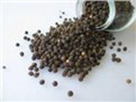 Tây Ban Nha thông báo lệnh cảnh báo y vụ nhập khẩu hạt tiêu đen