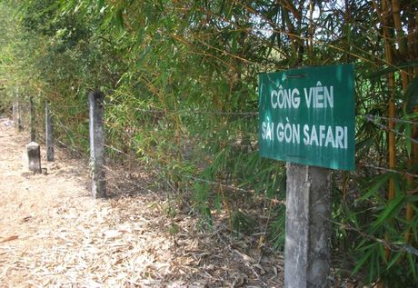 Dự án 500 triệu USD bỏ hoang 11 năm, bí thư Đinh La Thăng ra