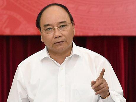 Thu tuong: Xu ly nghiem vi pham vu ca chet hang loat - Anh 1