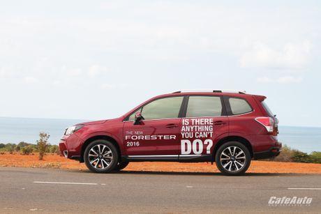 Danh gia Subaru Forester 2016: Thuc dung va hon the nua - Anh 11