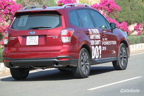 Danh gia Subaru Forester 2016: Thuc dung va hon the nua - Anh 20