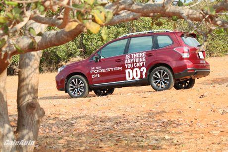 Danh gia Subaru Forester 2016: Thuc dung va hon the nua - Anh 2