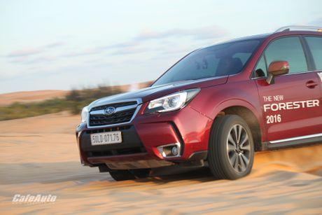 Danh gia Subaru Forester 2016: Thuc dung va hon the nua - Anh 30