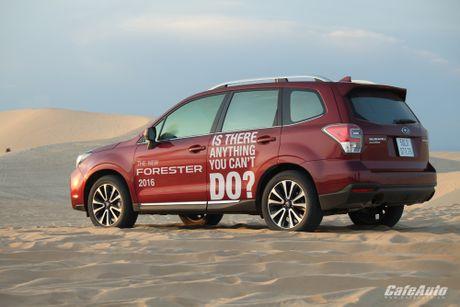 Danh gia Subaru Forester 2016: Thuc dung va hon the nua - Anh 31