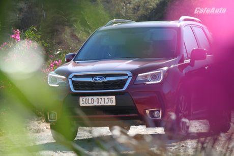 Danh gia Subaru Forester 2016: Thuc dung va hon the nua - Anh 9